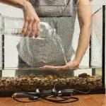 limpiar el acuario
